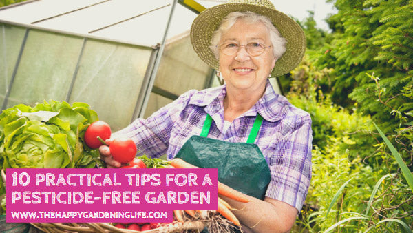 10 Practical Tips for a Pesticide-Free Garden