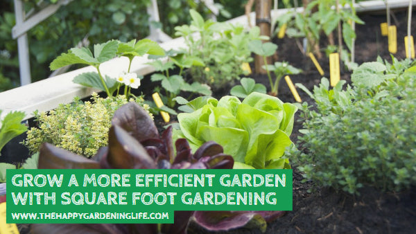 Grow a More Efficient Garden with Square Foot Gardening