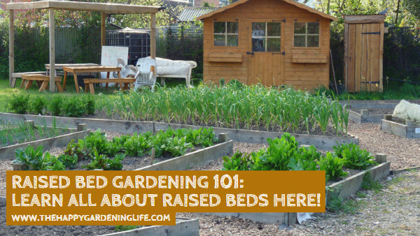 Raised Bed Gardening 101: Learn All About Raised Beds Here!