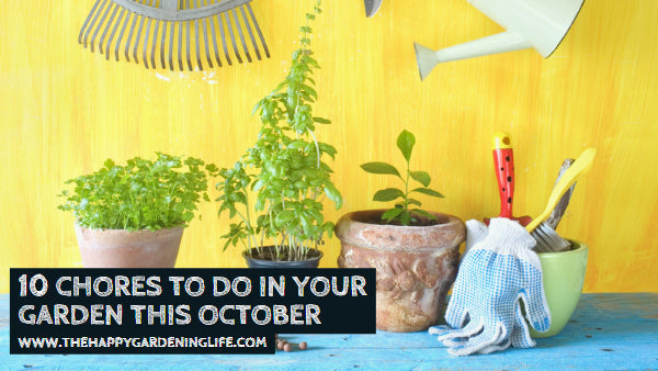 10 Chores to Do in Your Garden In October