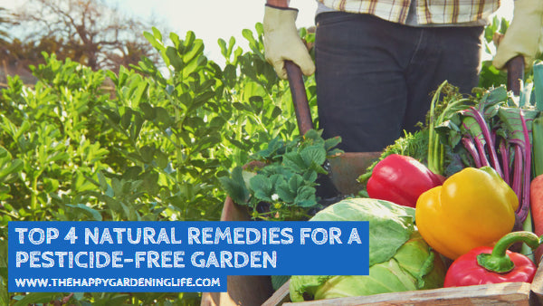 Top 4 Natural Remedies for a Pesticide-Free Garden