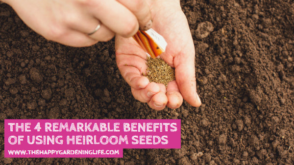 The 4 Remarkable Benefits of Using Heirloom Seeds