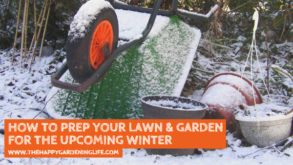 Winter Gardening Tips: How to Prep Your Lawn & Garden for the Upcoming Winter