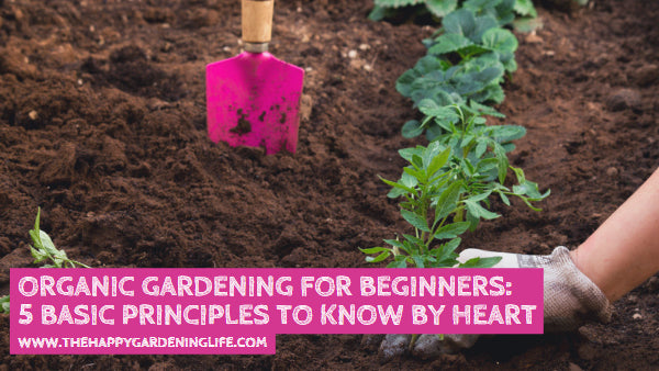 Organic Gardening for Beginners: 5 Basic Principles to Know by Heart