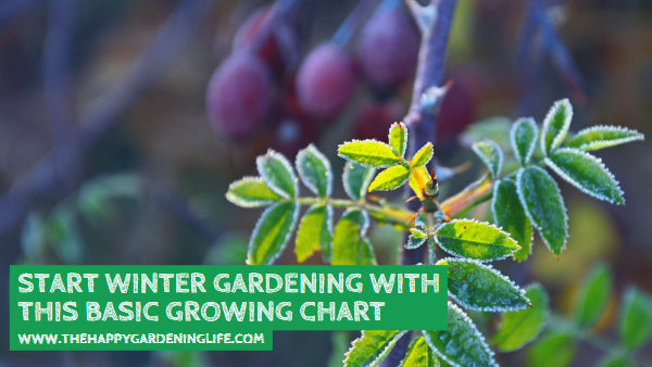 Start Winter Gardening With This Basic Growing Chart