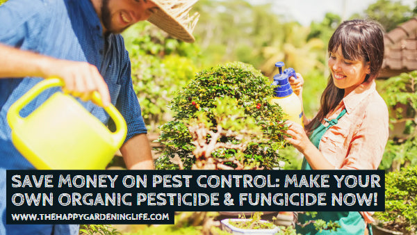 Save Money on Pest Control: Make Your Own Organic Pesticide & Fungicide Now!