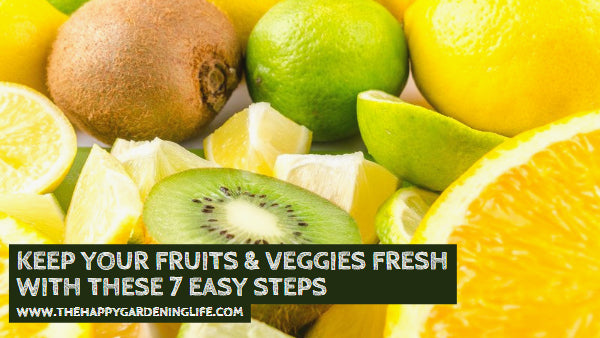 Wondering How to Keep Your Fruits & Veggies Fresh? These 7 Easy Steps Will Help You