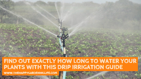 Find Out Exactly How Long to Water Your Plants With This Drip Irrigation Guide