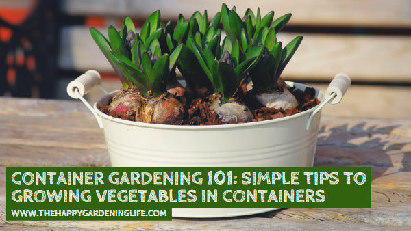 Container Gardening 101: Simple Tips to Growing Vegetables in Containers