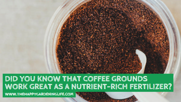 Did You Know That Coffee Grounds Work Great as a Nutrient-Rich Fertilizer? Find Out More Here!