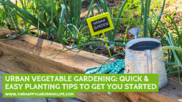 Urban Vegetable Gardening: Quick & Easy Planting Tips to Get You Started