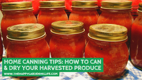 Home Canning Tips: How to Can & Dry Your Harvested Produce