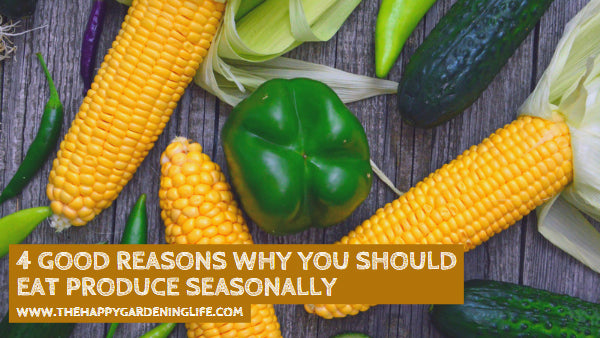 4 Good Reasons Why You Should Eat Produce Seasonally