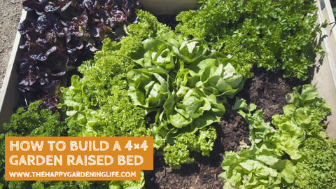 How to Build a 4×4 Garden Raised Bed