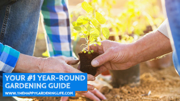 Your #1 Year-Round Gardening Guide