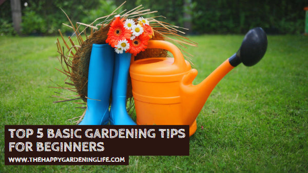 Top 5 Basic Gardening Tips for Beginners