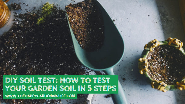 DIY Soil Test: How to Test Your Garden Soil in 5 Steps