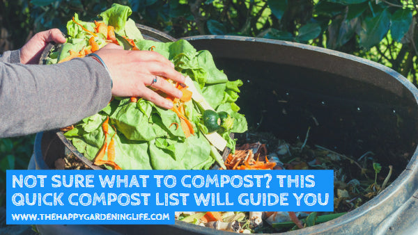Not Sure What to Compost? This Quick Compost List Will Guide You
