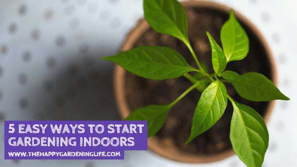 5 Easy Ways to Start Gardening Indoors