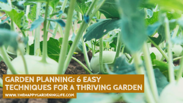 Garden Planning: 6 Easy Techniques for a Thriving Garden