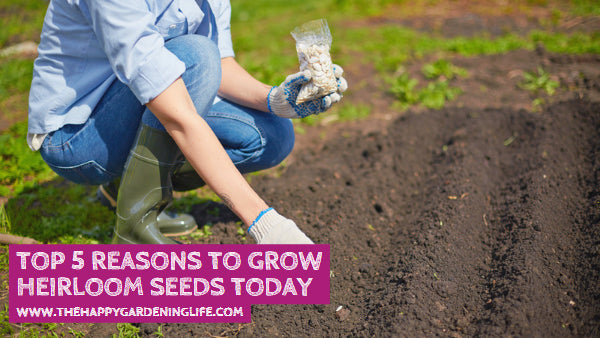 Top 5 Reasons to Grow Heirloom Seeds Today