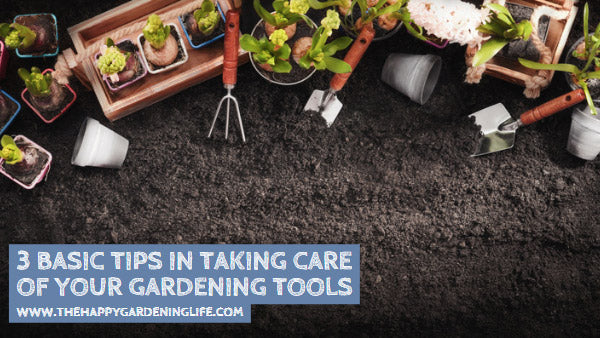 3 Basic Tips in Taking Care of Your Gardening Tools