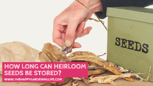 How Long Can Heirloom Seeds Be Stored?