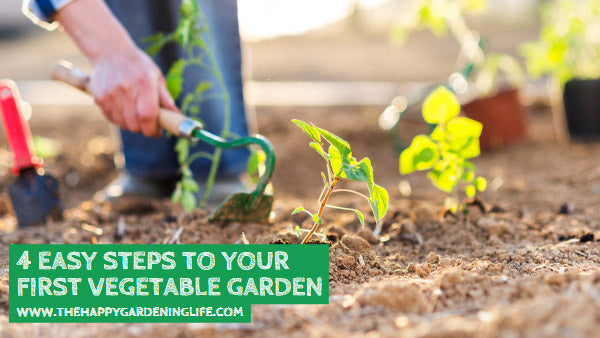 4 Easy Steps to Your First Vegetable Garden