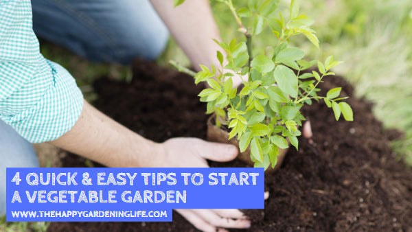 4 Quick & Easy Tips to Start a Vegetable Garden