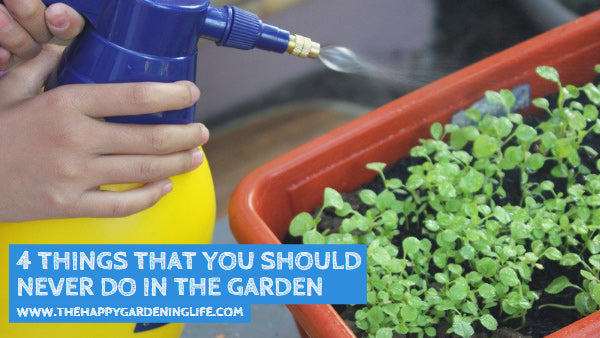 4 Things That You Should Never Do in the Garden