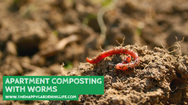 Apartment Composting with Worms