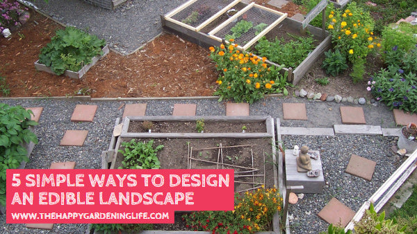 5 Simple Ways to Design an Edible Landscape