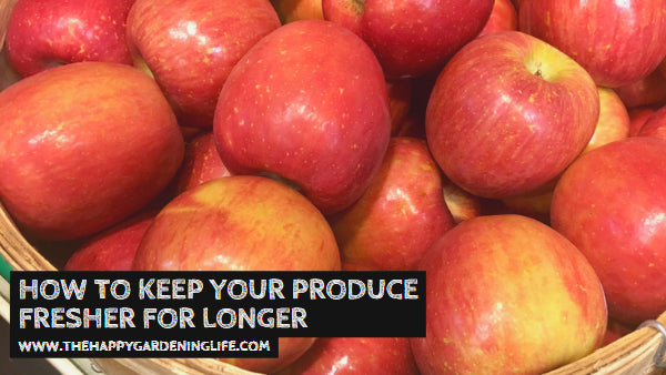 How to Keep Your Produce Fresher for Longer
