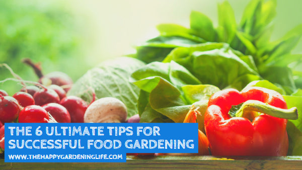 The 6 Ultimate Tips for Successful Food Gardening