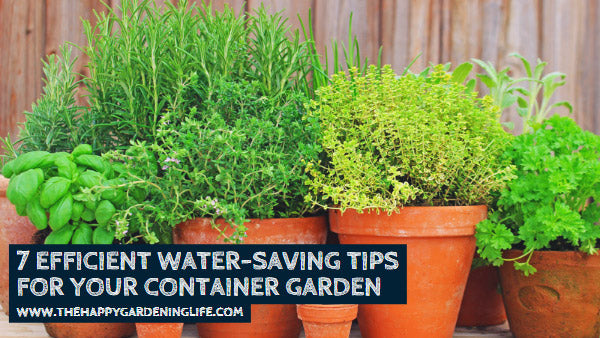 7 Efficient Water-Saving Tips for Your Container Garden