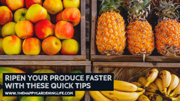 Ripen Your Produce Faster With These Quick Tips