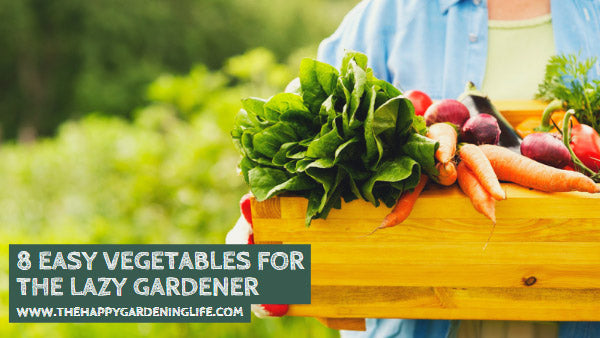 8 Easy Vegetables for the Lazy Gardener