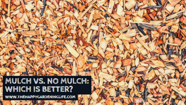 Mulch vs. No Mulch: Which is Better?