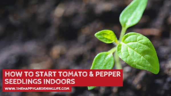 How to Start Tomato & Pepper Seedlings Indoors
