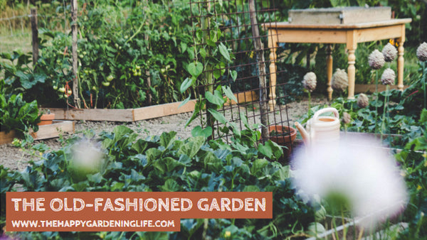 The Old-Fashioned Garden