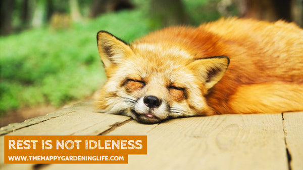 Rest Is Not Idleness