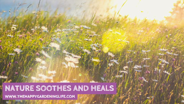 Nature Soothes And Heals