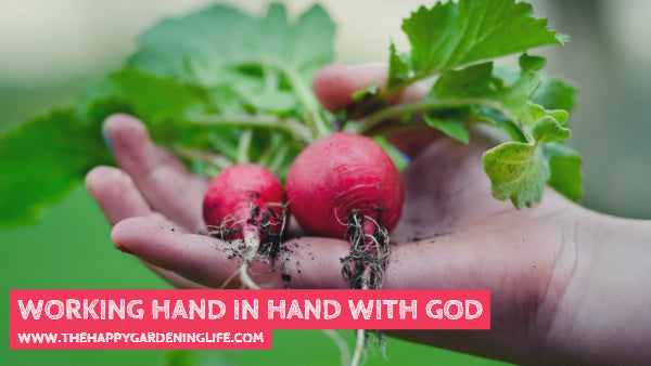 Working Hand In Hand With God