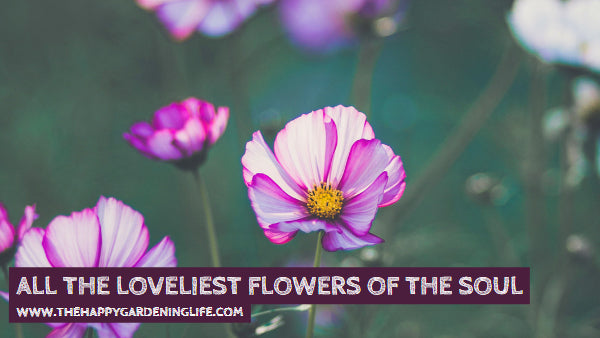 All The Loveliest Flowers Of The Soul