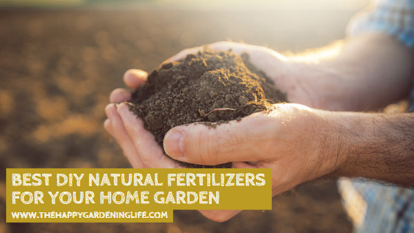 Best DIY Natural Fertilizers for Your Home Garden