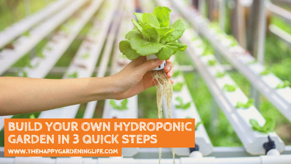 Build Your Own Hydroponic Garden in 3 Quick Steps