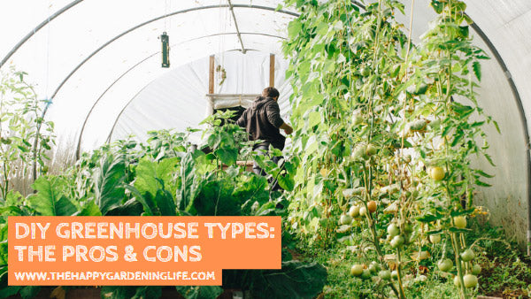 DIY Greenhouse Types: The Pros & Cons