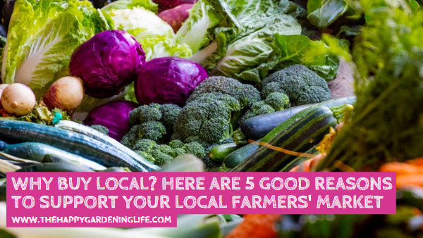 Why Buy Local? Here are 5 Good Reasons to Support Your Local Farmers' Market