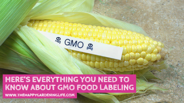 Here's Everything You Need to Know About GMO Food Labeling