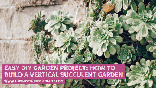 Easy DIY Garden Project: How to Build a Vertical Succulent Garden